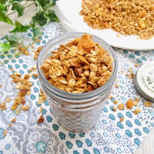 Ginger Amazake tropical granola