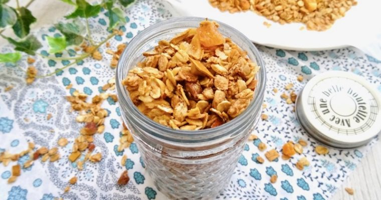 Ginger tropical amazake granola