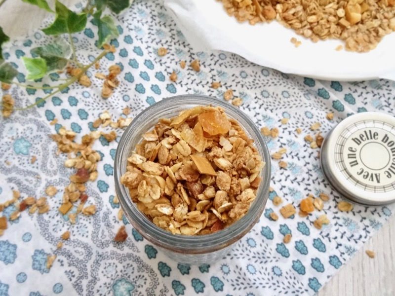 Ginger tropical granola
