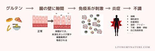 グルテンとleaky gutの図